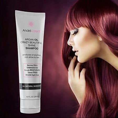 Andre Lorent Argan Oil Shampoo