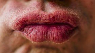 penggunaan produk bibir