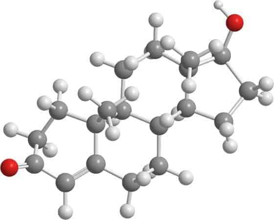 Testosteron Kimia Organik