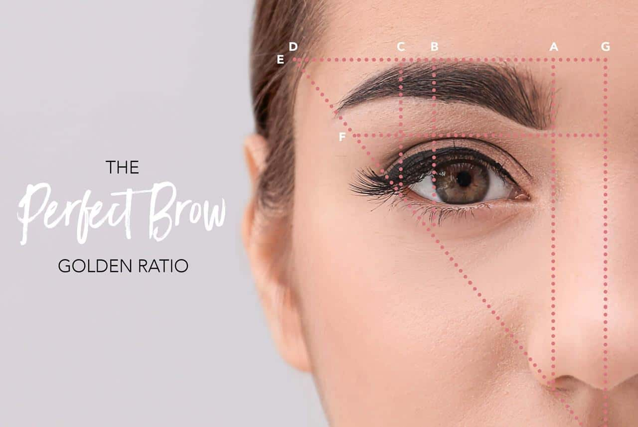 Golden Ratio pola alis eyebrow