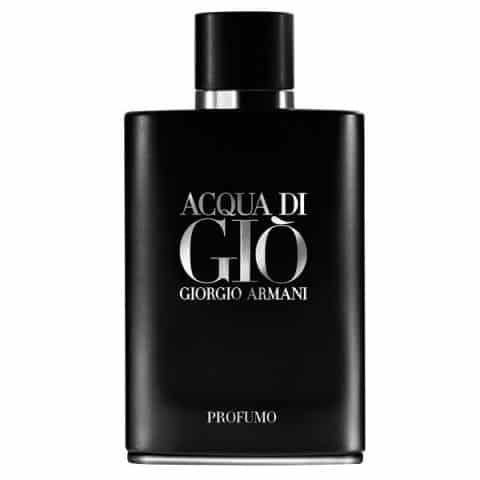 Giorgio Armani Acqua Di Gio Profumo Man