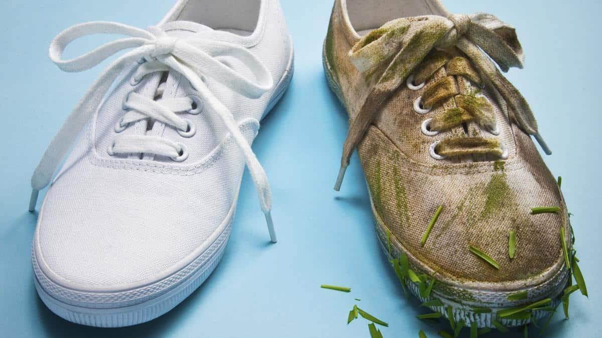 Rajin Mencuci Sepatu