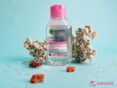 Review garnier micellar water_01 (Copy)