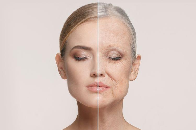 Manfaat Tegreen NuSkin_Membantu Mencegah Penuaan Dini