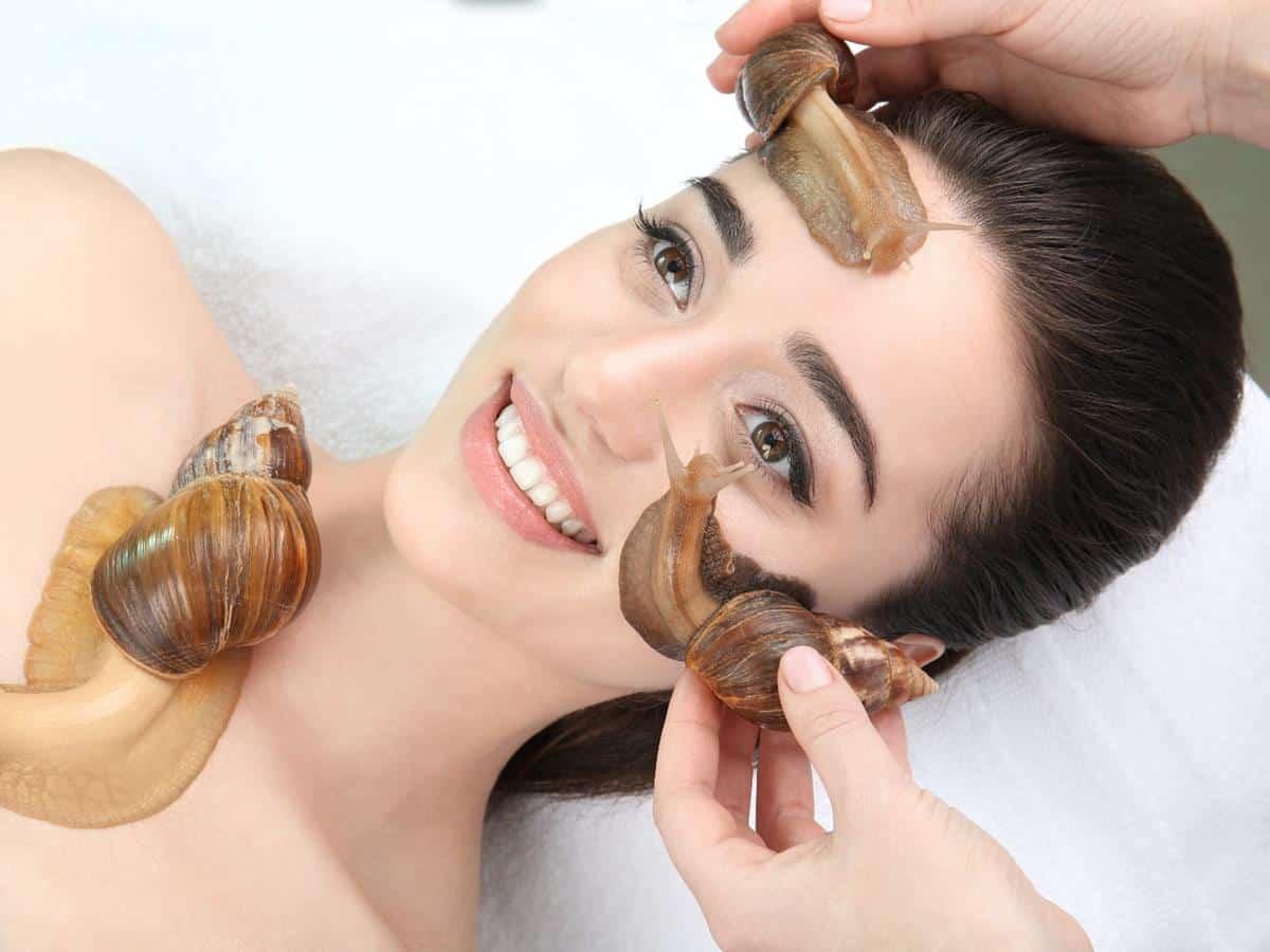 Celebrity Escargot Course