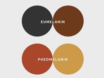 Eumelanin