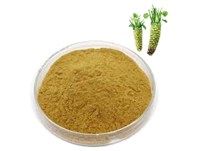 Wasabi extract